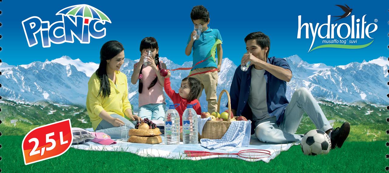 4-x-9_picnic